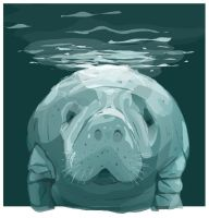 Manatee by HugTheMonster