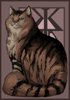 Magnificent Mainecoon (Coco-Chan) (Gift Art) by KristinTree