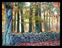 Autumn - right outside by Indirie