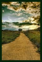 d_b by Radiatr