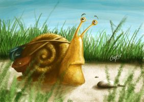 Travelling Snail by artcova