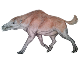 Andrewsarchus mongoliensis by Edasich
