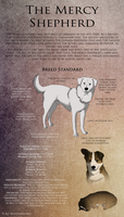 Mercy Shepherd Breed Standard by EverlastingStables