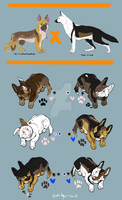 German Shepherd Point adopts by Esaki