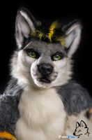 Fursuit Portrait - Sorin Omega by FotoFurNL