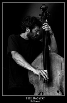 The Bassist by kimnorgaard