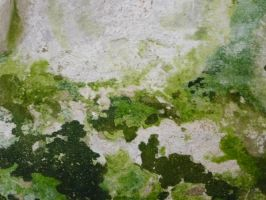 another texture II by mimose-stock