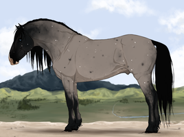 Blue roan design for sale! by PaleMount