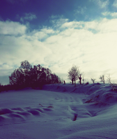 Winter Scape. by MateuszPisarski