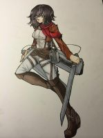 Mikasa by buttfabric