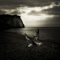 walking around Etretat V... by Kaarmen