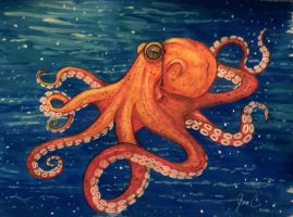 Octopus by jenc