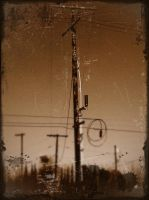 Old Telephone Pole by GeneLythgow