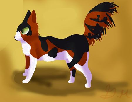 Turkish calico by Amaneccer
