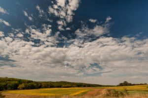 A Sunny Afternoon by lividity101