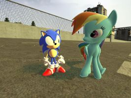 Classic Sonic meets Rainbow Dash by sp19047