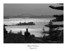 Silver Harbour by sydney-photographers