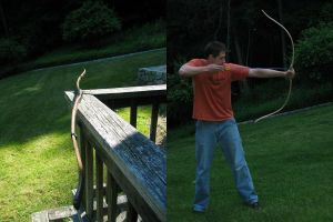 Primitive Bow I by dougk16