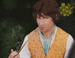 Bilbo Baggins of Bag End by YourAverageJoke