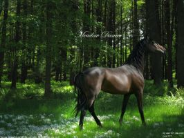 Meadow Dancer by AEC101