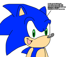 Sonic talks staying on video game by SuperMarcosLucky96