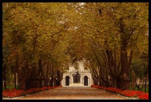 Autumn in Istanbul by baytarilkay