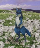 Lucario by periculant