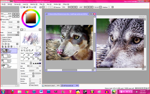 another wolf WIP :p by FireLioness