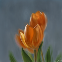 tulips by buzzelliArt