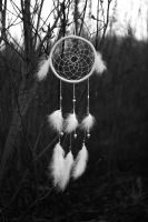 Dreamcatcher2 by TinaGrey