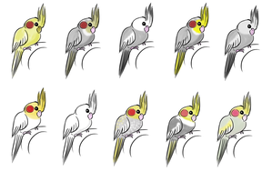 cockatiels for points by hoshi-kou