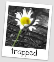 Trapped by DEATHxWISH143
