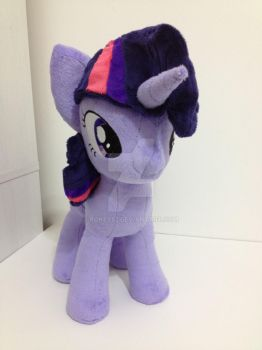 Twilight Front View by pokey52