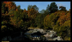 Welcome to Autumn by Arawn-Photography