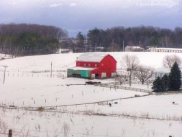 Winter On The Farm by jim88bro