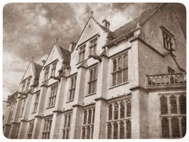 Woodchester mansion 2 by PeteHamilton