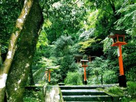 Hiking in Kyoto by MColling