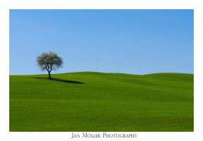 Tuscany II by JanMoeller