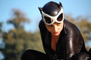 Catwoman 2 by mesocoscia