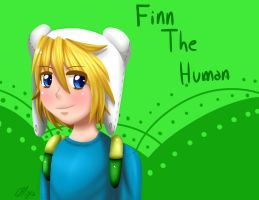 Finn The Human by Mikapower19