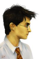 Harry by kimpertinent
