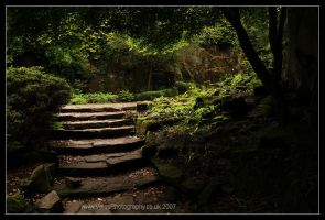 Seven Steps by VelesPhotos