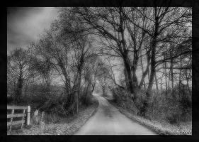 upon the path by Weissglut