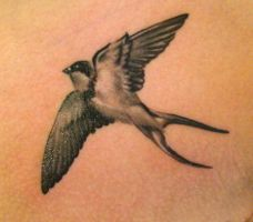 swallow tattoo by jrunin