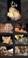 Cats Calendar 2011 by tigaer