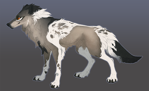 Wolf Adoptable Closed by Sheylu