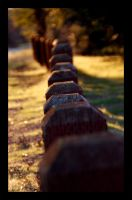 in line. by ohshrubbery