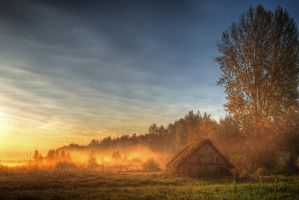 Hut in the fog III by Seselgis