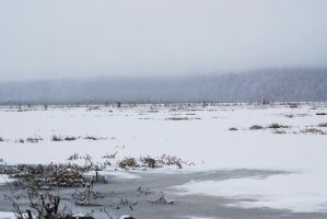 Winter Lake 11 by prints-of-stock