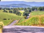 Hilly Country Road by jim88bro